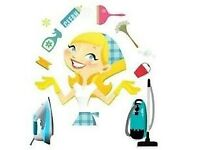CLEANING / IRONING £11 PER HOUR !!!