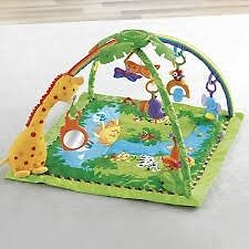 Fisher Price Rain Forest Gym