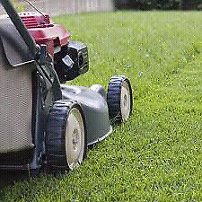 Dependable lawn and yard maintenance