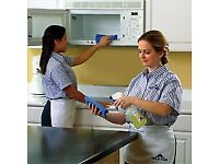 END OF TENANCY CLEANER PROFESSIONAL CLEANING SERVICE/OVEN/CARPET/OFFICE/DOMESTIC COMPANY WALLINGFORD