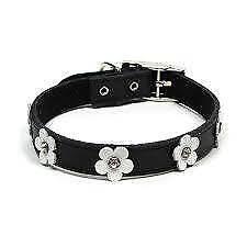 Foxy Puppy  Authentic Swarovski Crystal Dog Collar