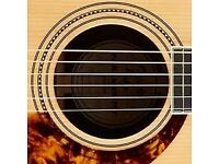 Seeking local (ish) Electo Acoustic Guitar player/singer