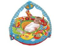 Baby Playnest / Activity Ring