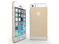Apple iPhone 5s 16GB Factory Unlocked Gold 6 Months Warranty USB Charger Screen Protector Sim VGC