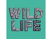 Volunteer at WILDLIFE festival 8/6-11/6