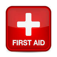Public First Aid, CPR and AED Provider Class