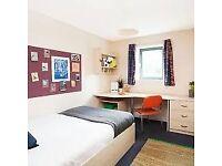 Premium Plus Ensuite Room