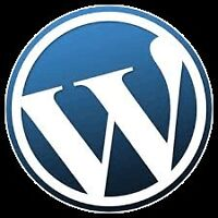 Wordpress Theme Installs for $99