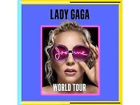 Lady Gaga Birmingham, standing