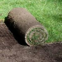 Lawn care...New sodding /re-sod/grading... free quotes $.85/sqft