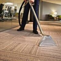 WE STEAM CLEAN (CARPET,RUG,SOFA,MATTRESS,AUTO,FLOOD,TILE&GROUT)