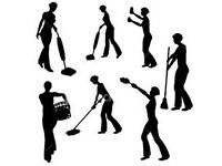 Cleaner/Housekeeper Available