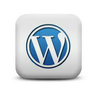Web Design/Wordpress Special $199 ONLY