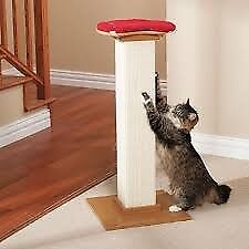77% OFF! SMARTCAT the ultimate cat scratching post tower