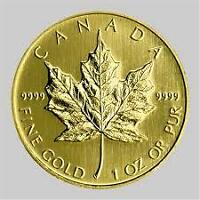 WANTED GOLD MAPLES-PAYING OVER SPOT