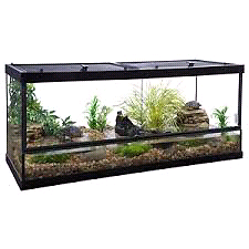 Wanted fish/reptile  tank Liverpool Liverpool Area Preview