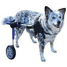 dog wheelchair ebay