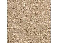 Brand new carpet for sale