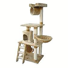 Looking for a Cat tree/climber London Ontario image 2