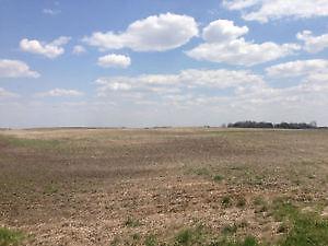 Farm Land for Sale RM of Stanley 215 near Melville Sask
