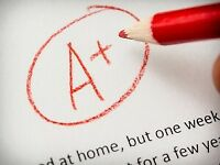 Essay writer for undergraduate and graduate student papers!