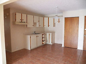 Appartement a louer - 4 1/2 - Style Condo - Longueuil