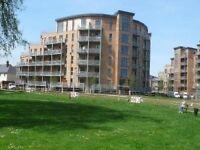 3 bedroom flat in Lockwood House, Harry Zeital Way, E5
