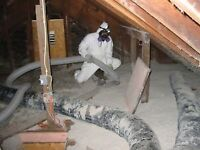 Mold, Asbestos Removal & Demolition from Certified Profesionals