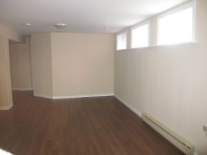 Basement Suite Spacious With Fully Private Kitchen & Bathroom