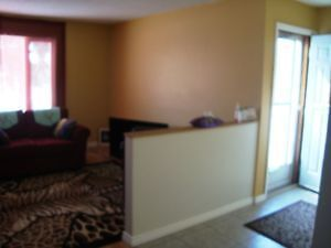 Highly furnished house for rent near U of M