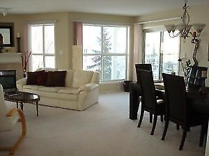 Fully Furnished 2 Bed/ 2 Bath Condo Downtown-Gated Community