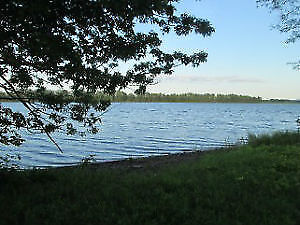 900+ feet on Saint John River~27 acres~Home~Barns~A RARE FIND