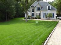 Lawn maintenance Spring cleaning!!!!