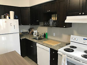 Sublet from March to August 246 Albert Street