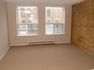Spacious One Bedroom Apartment Downtown - Richmond @ York St