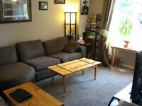 Roommate wanted for furnished room near university! September 1