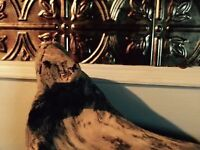 Driftwood Art - Seal of Approval