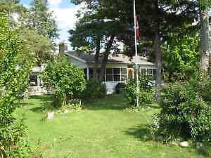 LOOKING FOR: 2-3 Bdr. to RENT~Back Yard would be a Bonus! Windsor Region Ontario image 1