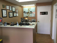 Mechanic Shop & Professional Auto Service, Car Repair north york
