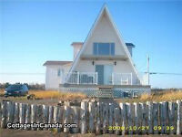 4 Bedroom Beachfront Cottage Beresford- All amenities