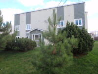 Newly Renovated, Centrally Located, Available Now!