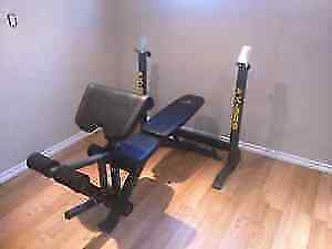 squat rack with bench