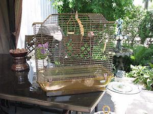 Cage d`oiseau couleur bun clair ambrée.