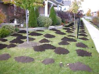 *** BOOK YOUR TOPSOIL + SEED PACKAGE TODAY *****