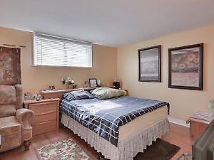 Bright + Spacious 1.5 Bedroom Walkout Basement for Rent - $1250