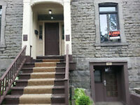 2 bedroom apartment in heat of downtown montreal