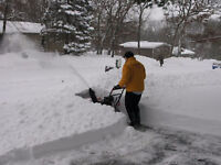 LOOKING FOR A SNOW REMOVAL WORKER AND A HAND SHOVELLER