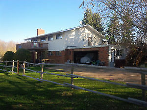 Acreage in Parkland county, fenced for horses