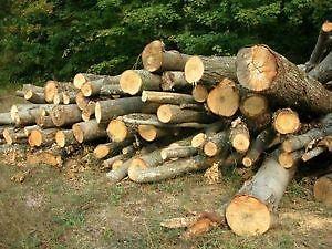 8 foot firewood delivered.