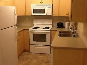 Completely Furnished 2 beds/ 2 batha condo in Timberlea - June